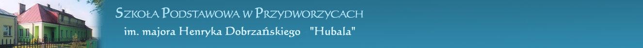 Szkoła Podstawowa w Przydworzycach